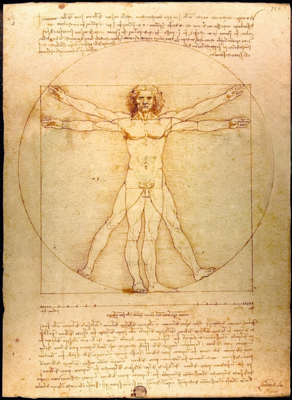 Vitruvian man.jpg