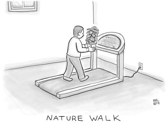 Nature Walk.jpg